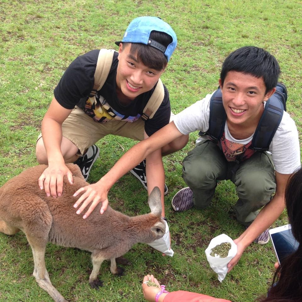 Happy students feeding a wallaby.